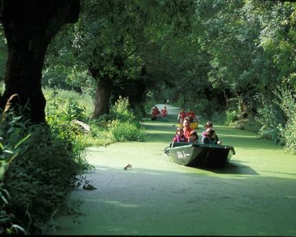 Marais poitevin parc naturel r gional eelv deux s vres for Piscine coueron